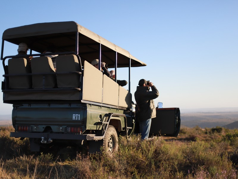 Ranger Diaries - Game Drive